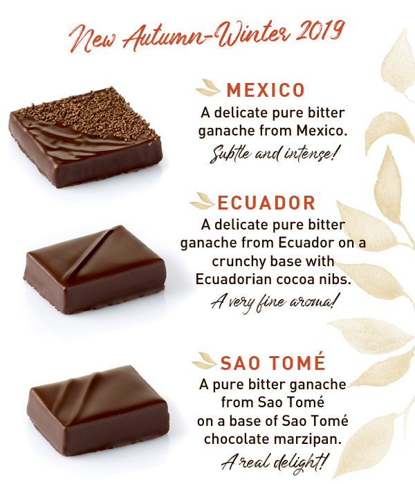 The new chocolates ganaches